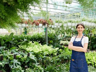 Jardinier G3F Pépinières dans serre plantes vertes et vivaces