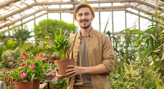 Jardinier G3F Pépinières dans serre plantes vertes
